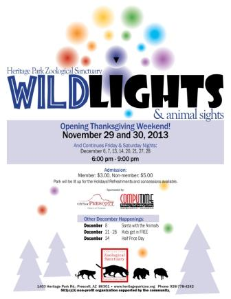 13-072 2013 Wild Lights Logocomp