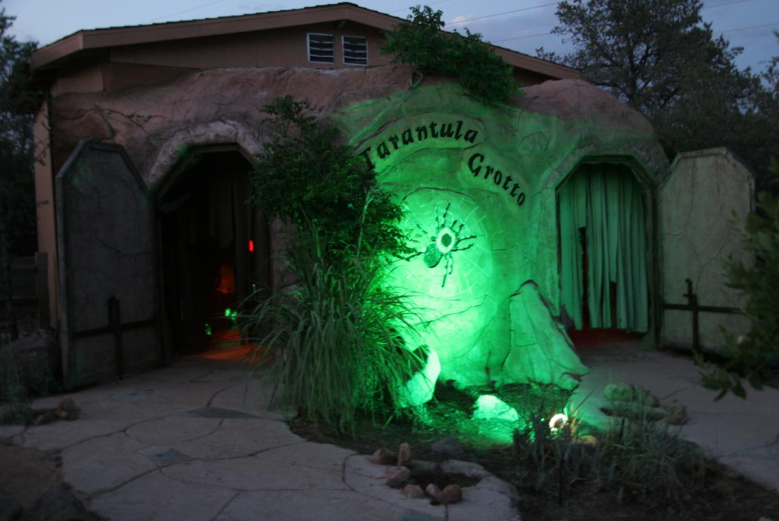 Zoo by Moonlight Tarantula Grotto